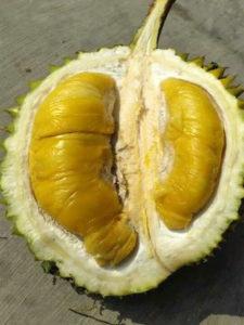 Fresh Durian 6