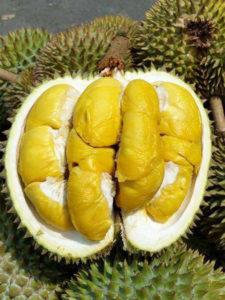 Fresh Durian 8